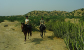 Riders in the Rajasthani Bagar